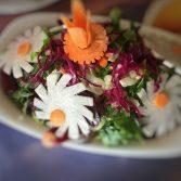 amasra-salatis