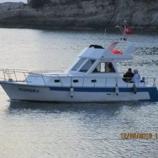 flipper-amasra (2)