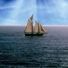 arya-denizcilik.jpg